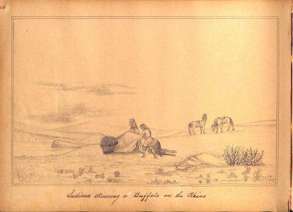 Simons Print  - Indian Skinning a buffalo on the plains.jpg