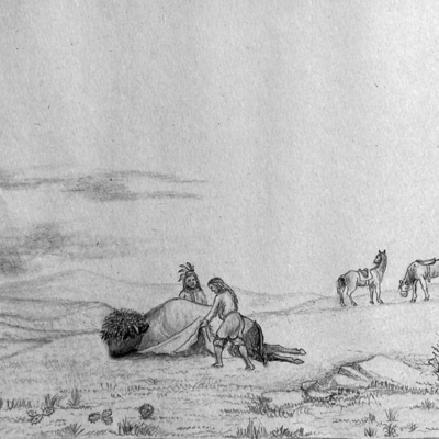 Indian skinning a buffalo on the plains