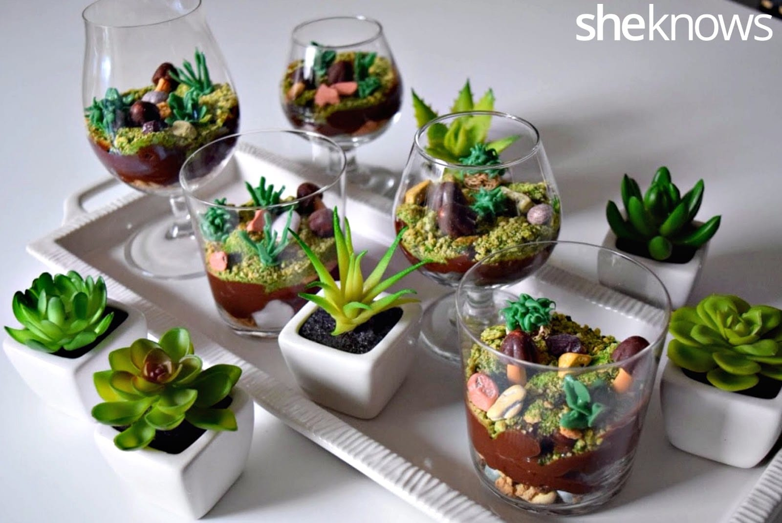 Tinker Zone: Edible Terrariums