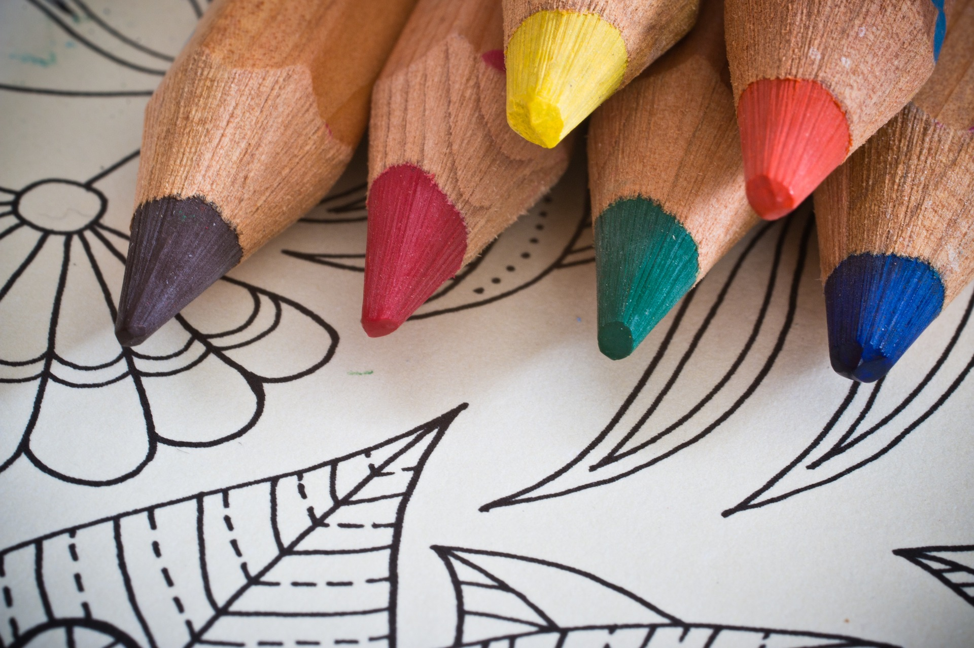 Adult Coloring Club